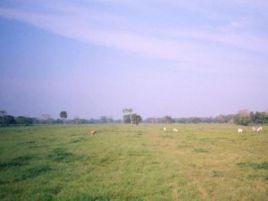 Foto de rancho en venta en Frontera Centro, Centla, Tabasco, 5733419,  no 01