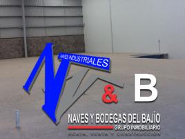 Foto de bodega en renta en Castro del Río [Parque Tecnoindustrial], Irapuato, Guanajuato, 16699013,  no 01