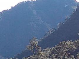 Foto de terreno industrial en venta en San Nicolás, Tetela de Ocampo, Puebla, 14795693,  no 01