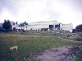 Foto de bodega en venta en Santa María Ajoloapan, Hueypoxtla, México, 19924630,  no 01