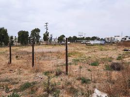 Foto de terreno comercial en renta en aguascalientes , eduardo crosthwhite, playas de rosarito, baja california, 17905597 No. 01