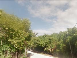 Foto de terreno industrial en venta en akumal trail , akumal, tulum, quintana roo, 6872812 No. 01