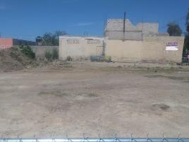 Foto de terreno habitacional en renta en arroyo de salas , los ruiseñores, tala, jalisco, 14183077 No. 01