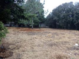 Foto de terreno comercial en venta en avenida daniel sarmiento rojas 62, los alcanfores, san cristóbal de las casas, chiapas, 11935879 No. 01