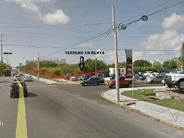 Foto de terreno comercial en renta en avenida kabah , cancún centro, benito juárez, quintana roo, 5574078 No. 01