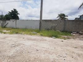 Foto de terreno habitacional en venta en avenida paseo del mar , san carlos, carmen, campeche, 0 No. 02