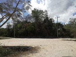 Foto de terreno comercial en venta en avenida pedregal 2, el pedregal, solidaridad, quintana roo, 0 No. 01