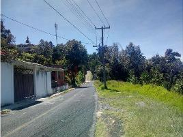Foto de terreno habitacional en venta en avenida principal , la trinidad tepehitec, tlaxcala, tlaxcala, 0 No. 01