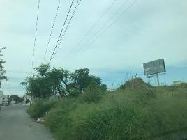 Foto de terreno habitacional en renta en avenida prolongación madero s/n , fierro, monterrey, nuevo león, 0 No. 01