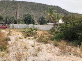 Foto de terreno comercial en renta en avenida regidores , benito juárez oriente, la paz, baja california sur, 12530845 No. 01
