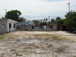Foto de terreno habitacional en renta en  , aviación, carmen, campeche, 11782336 No. 01