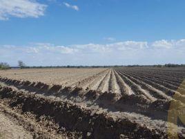 Foto de terreno industrial en venta en Camargo, Camargo, Tamaulipas, 12766204,  no 01