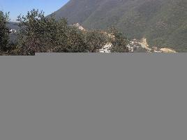 Foto de terreno habitacional en venta en bellini man 20 , ojocaliente centro, ojocaliente, zacatecas, 0 No. 01