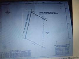 Foto de terreno comercial en venta en .. , buena vista de peñuelas, aguascalientes, aguascalientes, 0 No. 01