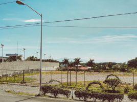Foto de terreno comercial en venta y renta en El Trapiche, Cuauhtémoc, Colima, 17117250,  no 01