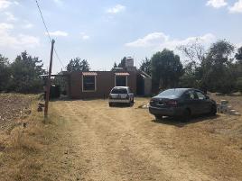 Foto de casa en venta en calle 5 de mayo 42, san miguel xaltipa, contla de juan cuamatzi, tlaxcala, 0 No. 01