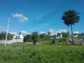 Foto de terreno habitacional en venta en calle del rio 12, santa maría atlihuetzian, yauhquemehcan, tlaxcala, 0 No. 01