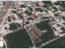 Foto de terreno habitacional en venta en calle encino , álamos i, benito juárez, quintana roo, 0 No. 01
