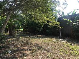 Foto de terreno comercial en venta en calle las flores 12, pedro c colorado, huimanguillo, tabasco, 0 No. 01