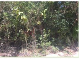 Foto de terreno habitacional en venta en calle marte , álamos i, benito juárez, quintana roo, 0 No. 01