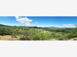 Foto de rancho en venta en camino 001, los dos municipios, cajeme, sonora, 12961228 No. 01
