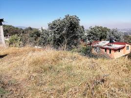 Foto de terreno habitacional en venta en camino a san andrés 5, san lorenzo atemoaya, xochimilco, df / cdmx, 0 No. 01