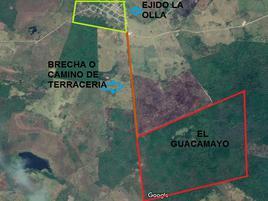 Foto de terreno comercial en venta en camino de terracería , campo la olla, candelaria, campeche, 0 No. 01