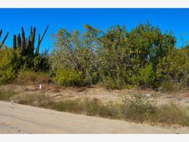 Foto de terreno comercial en venta en camino del sabueso , el carrizal, la paz, baja california sur, 17598261 No. 02