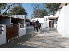 Foto de rancho en venta en camino pirules -, valle verde (haciendas valle verde), apaseo el grande, guanajuato, 0 No. 01