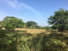 Foto de terreno habitacional en venta en camper 12, 2 montes, centro, tabasco, 0 No. 01