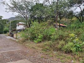 Foto de terreno habitacional en venta en caoba #53 53, santa maría del oro, santa maría del oro, nayarit, 0 No. 01