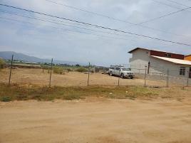 Foto de terreno habitacional en venta en carmen serdan 7, praderas del sol, ensenada, baja california, 0 No. 01