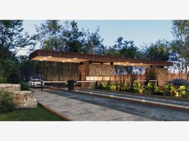 Foto de terreno habitacional en venta en carretera 307 1, tumben kaa, tulum, quintana roo, 0 No. 01