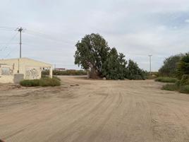 Foto de terreno comercial en renta en carretera a san felipe kilometro 11 , cerro prieto 2, mexicali, baja california, 0 No. 01