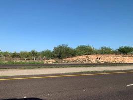 Foto de terreno comercial en venta en carretera a san pedro , san pedro méxico, la paz, baja california sur, 0 No. 01
