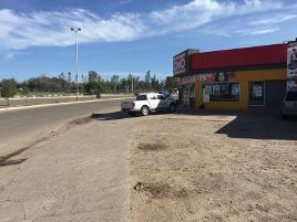 Foto de terreno comercial en venta en carretera a torreón , 5 de mayo, durango, durango, 0 No. 01