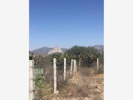 Foto de terreno comercial en renta en carretera antigua bernal toliman 10, bernal, ezequiel montes, querétaro, 0 No. 01