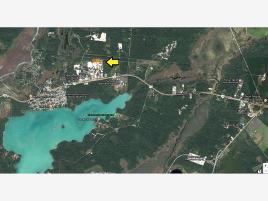 Foto de terreno comercial en venta en carretera chetuma-huay-pix 0, huaypix, othón p. blanco, quintana roo, 0 No. 01
