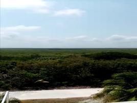 Foto de terreno industrial en venta en carretera chetumal quintana roo , bahía, othón p. blanco, quintana roo, 0 No. 01