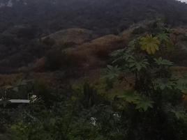 Foto de terreno comercial en venta en carretera cihuatlan 0, el naranjo, manzanillo, colima, 0 No. 01