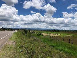 Foto de terreno comercial en venta en carretera comitan- la trinitaria , chichima guadalupe, comitán de domínguez, chiapas, 0 No. 01