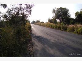 Foto de terreno industrial en venta en carretera el zapote 24, el zapote del valle, tlajomulco de zúñiga, jalisco, 0 No. 01