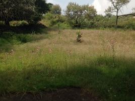 Foto de terreno comercial en renta en carretera federal a cuernavaca , san miguel xicalco, tlalpan, distrito federal, 4563895 No. 01