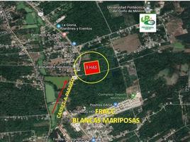 Foto de terreno comercial en venta en carretera federal comalcalco , quintín arauz, paraíso, tabasco, 14296770 No. 01