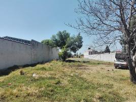 Foto de terreno habitacional en venta en carretera federal puebla - tlaxcala 160, de guardia 3ra sección, zacatelco, tlaxcala, 0 No. 01