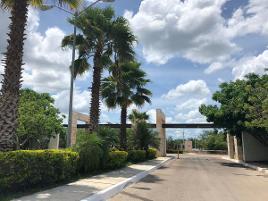 Foto de casa en venta en carretera merida- motul , sierra papacal, mérida, yucatán, 0 No. 01