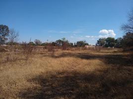 Foto de rancho en venta en carretera patzcuaro 1, la higuera, morelia, michoacán de ocampo, 0 No. 01