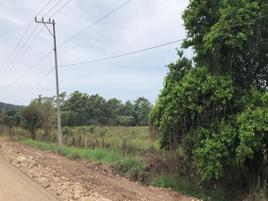 Foto de terreno habitacional en venta en carretera tepic-puerto vallarta , lima de abajo, compostela, nayarit, 0 No. 01