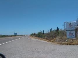 Foto de terreno comercial en venta en carretera transpeninsular san pedro-la paz , san pedro, la paz, baja california sur, 17710980 No. 01