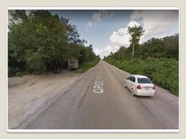 Foto de terreno comercial en venta en carretera tulum coba 14.5, coba, tulum, quintana roo, 0 No. 01